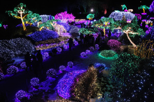 South Korea Christmas Lights