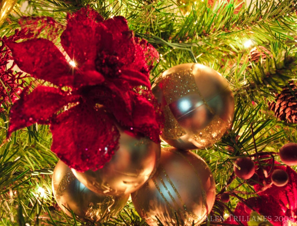 Unwrapping Christmas Ornaments