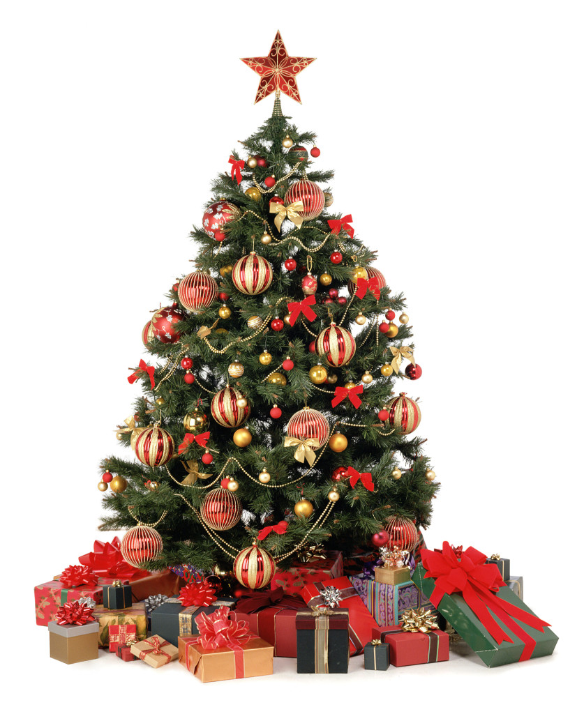Christmas Tree With Present