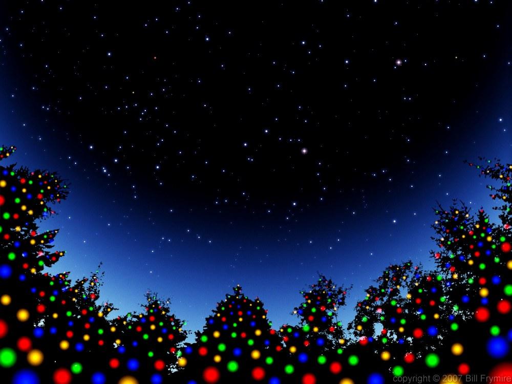 Christmas Light on Trees