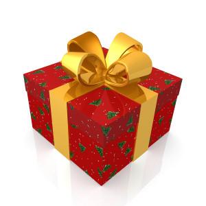Christmas Present Gift