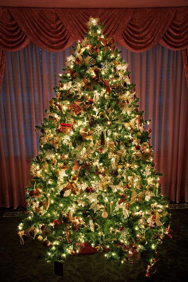 Pics Of Decorated Christmas Trees.Beautiful Christmas Tree Xmasblor
