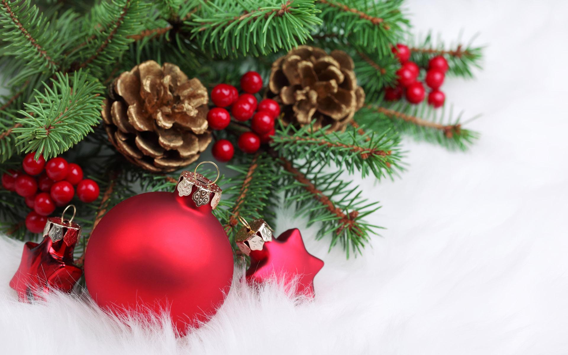 Images4 Fanpop Christmas Decoration Desktop